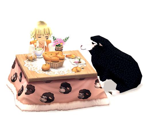 Mabinogi Kotatsu With Pan