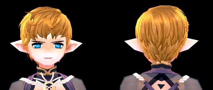 Mabinogi Gladiator Hair Beauty Coupon (M)