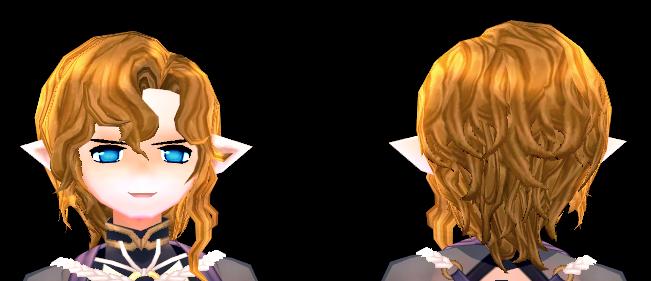 Mabinogi Llywelyn Hair Beauty Coupon (M)