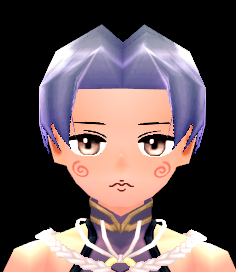 Mabinogi Pointy Maelstrom Face Beauty Coupon (M)
