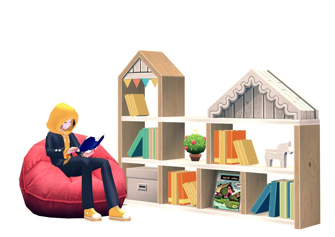 Mabinogi Bookshelf and Beanbag Chair